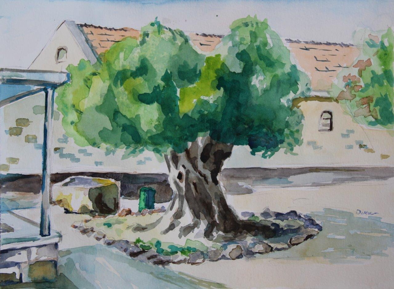 Beit Jabal